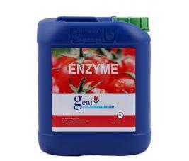 Geni Enzym | 10Ltr